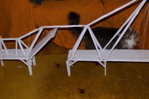 ponts en papier image021