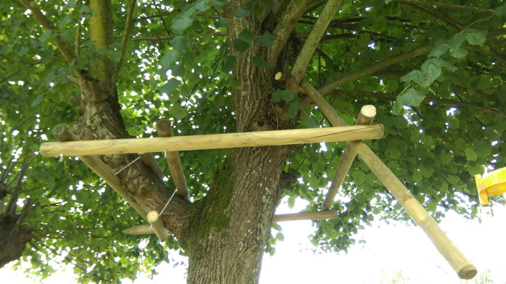 Construire une cabane iii dans les arbres toysfab - Construire une cabane dans un arbre ...