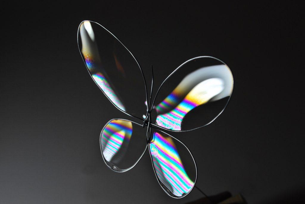 bulle-de-savon-papillon